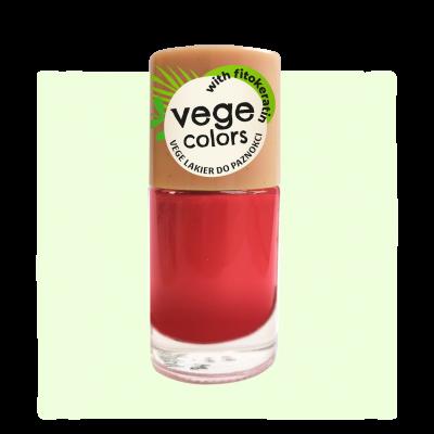 003 VEGE Colors